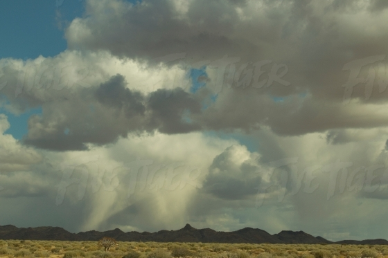 Thick rain clouds