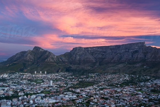 Pink clouds over Table Mountain