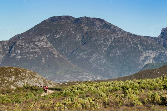 Mountain bikers with mountain in the background