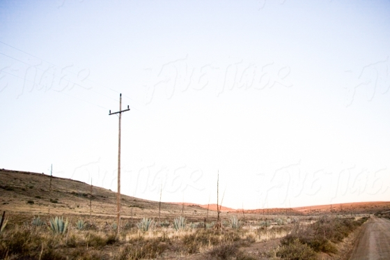 A view from a dirt road