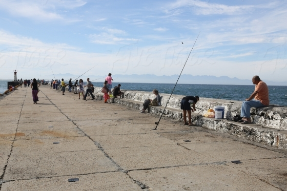 People fishing on a pier
