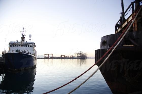 Nautical scene in the harbour