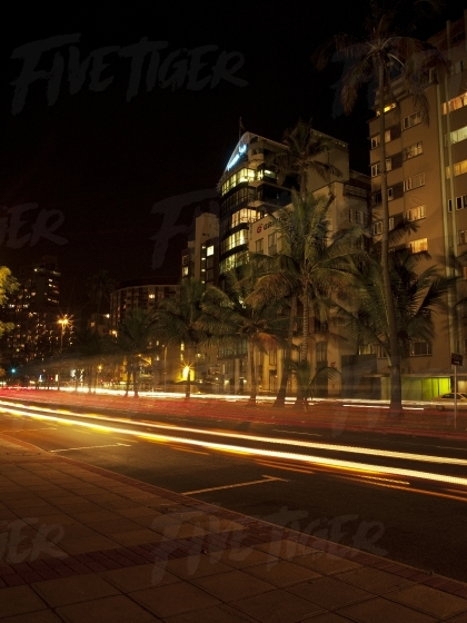 Palm lined street at night