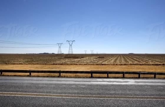 Golden field adjacent to a highway