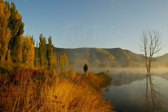 Free State open spaces