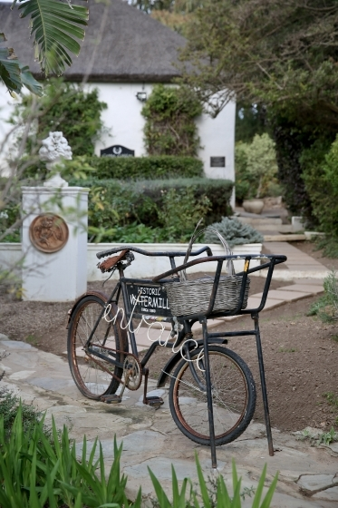 Parked bicycle in a garden