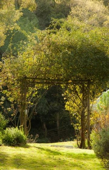 Archway in a garden