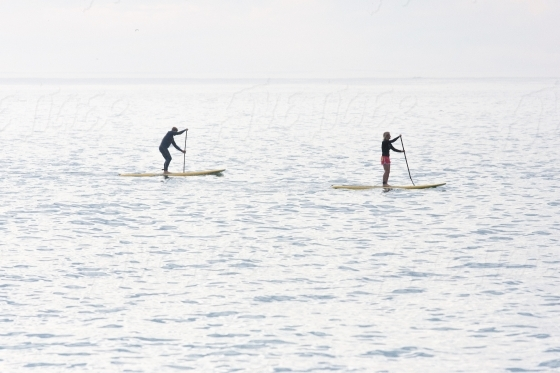 Two people SUP boarding in the sea