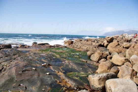 Rocks off Kalk bay